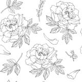 Seamless pattern with flowers and leaves of peony. Black outline on transparent background vector illustration