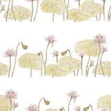 Seamless pattern with flowers lotus Royalty Free Illustration