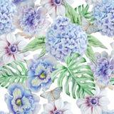 Seamless pattern with flowers. Monstera. Anemone. Pansies. Hudrangeya. Watercolor illustration. Stock Images