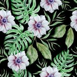 Seamless pattern with flowers. Monstera. Anemone. Watercolor illustration. Stock Images