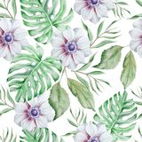 Seamless pattern with flowers. Monstera. Anemone. Watercolor illustration. Royalty Free Stock Image