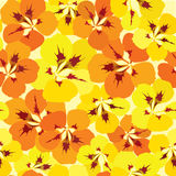 Seamless pattern with flowers nasturtium Royalty Free Stock Images