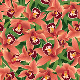 Seamless pattern with flowers orchids. Seamless texture with red flowers orchids with leaves Stock Image