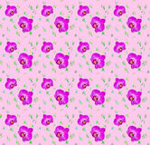 Seamless pattern of flowers orchids Royalty Free Stock Photography