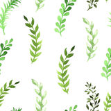 Seamless pattern of flowers painted in watercolor. On white paper Stock Images