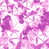 Seamless pattern of flowers. Painted with watercolors Royalty Free Stock Photography