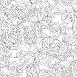 Seamless pattern of flowers peonies graphics Royalty Free Stock Images