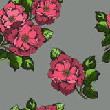 Seamless pattern with flowers peons for printing on paper or fabric. Royalty Free Stock Photos