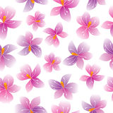 Seamless  pattern with flowers. Stock Photos