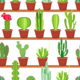 Seamless pattern of flowers pots with cacti and succulents. Vector illustration Stock Photo