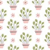 Seamless pattern flowers in pots. Stock Photos