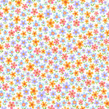 Seamless pattern with flowers. Seamless pattern with pretty flowers in blue, yellow, red and lilac colors on white background Royalty Free Stock Photos