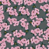 Floral pattern seamless background Stock Photography