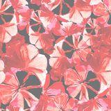 Seamless pattern of flowers. Painted with watercolors Royalty Free Stock Images