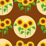 Seamless pattern with flowers sunflowers and circles Stock Photos