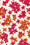 Seamless pattern with  flowers. Royalty Free Stock Image