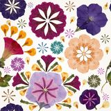 Seamless pattern with flowers. Vector, EPS10. Stock Photography