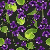 Seamless pattern with flowers violet royalty free illustration