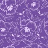 Seamless pattern with flowers violets Royalty Free Stock Images
