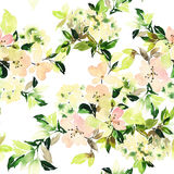 Seamless pattern with flowers watercolor. Gentle colors. Female pattern. Handmade Stock Photography