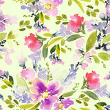 Seamless pattern with flowers watercolor. Stock Image