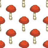 SEamless Pattern. Red Amanita Fly Agaric Mushroom. Seamless Pattern with Fly Agaric. Red Amanita Mushroom. Hand Drawn Illustration. Isolated Stock Photos