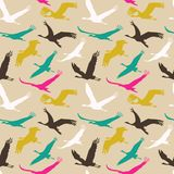 Seamless pattern of flying birds. Stock Image