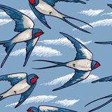 Seamless pattern with flying swallows Stock Image