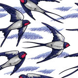 Seamless pattern with flying swallows Stock Images