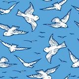 Seamless pattern of flying white birds. Vector background of flying white birds in the blue sky royalty free illustration