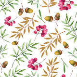 Seamless pattern with foliage, golden leaves, berries and acorns. Royalty Free Stock Image