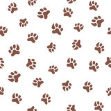 Seamless pattern with footprint of cat Stock Photography