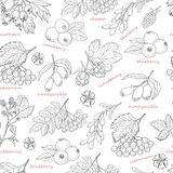 Seamless pattern with forest berries on white background Stock Photo