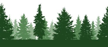 Seamless pattern. Forest, green fir trees silhouette. Vector vector illustration