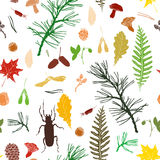 Seamless pattern with forest objects Stock Photography