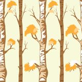 Seamless pattern forest trees in autumn or winter on yellow background. Vector illustration of autumn background, Flat cartoon vector seamless for wall paper or stock illustration