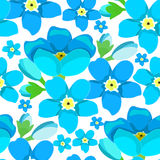 Seamless pattern  of forget-me-alpine a wild flower Stock Photos