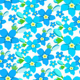 Seamless pattern  of forget-me-alpine a wild flower Royalty Free Stock Photography
