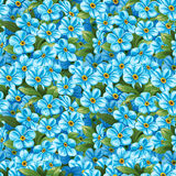 Seamless pattern of forget-me-not Stock Photo