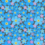 Seamless pattern with forget-me-not Royalty Free Stock Photos