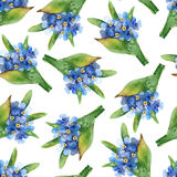 Seamless pattern with forget-me-nots vector illustration