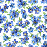 Seamless pattern with forget-me-nots stock illustration