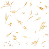 Seamless pattern from four cereals in form of grains and ears Stock Photo