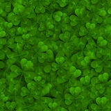 Seamless pattern with Four and Tree Leaf Clovers. Seamless pattern with Green Four and Tree Leaf Clovers. Vector illustration. Saint Patrick`s Day Lucky and Royalty Free Stock Photography