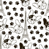 Seamless pattern with French Bulldog, Eiffel Tower and traces. B Stock Photos