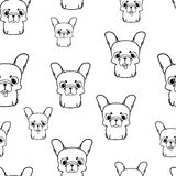 Seamless pattern with french bulldog puppies. Black and white vector Stock Photography