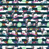 Seamless pattern with french bulldog and spinners. Stock Photos