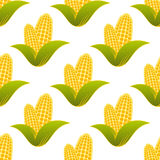 Seamless pattern of fresh corns Royalty Free Stock Photo