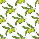 Seamless pattern of fresh green olives on a twig Stock Images