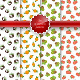 Seamless Pattern with Fruit Background Stock Images